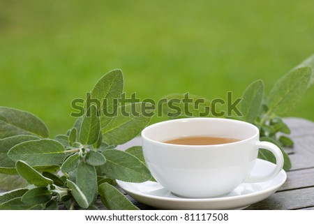 Sage tea with green leaves served on the terrace - stock photo