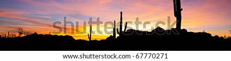 Saguaro silhouette in red blue sky. - stock photo