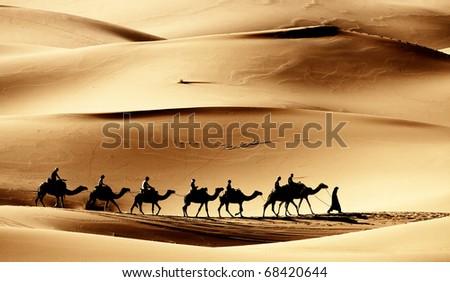 Sahara caravan - stock photo