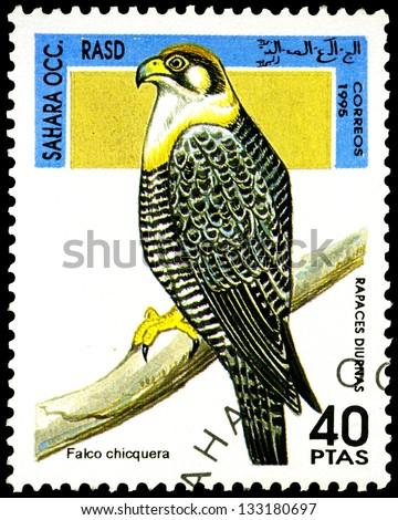"SAHARA - CIRCA 1995: A stamp printed in Sahrawi Arab Democratic Republic, shows a Falkco chicquera bird, with the same inscription, from the series ""Birds of prey"", circa 1995 - stock photo"