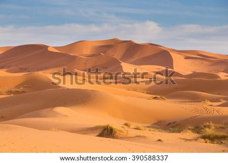 Sahara Desert in Merzouga, Morocco - stock photo