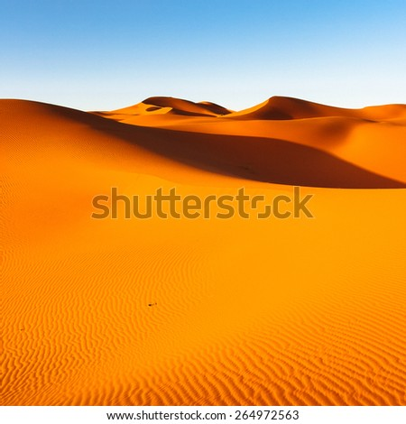 Sahara Desert, Sand Dunes at Sunset - stock photo