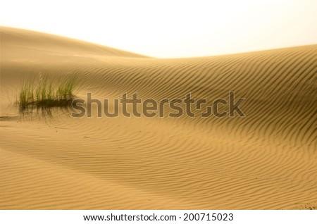 Sahara lines.Erg chebi dunes.Merzouga.Morocco - stock photo