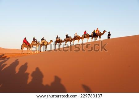 SAHARA, MOROCCO - 26 NOV: Camel caravan with tourists in the sahara desert.  November 26, 2008 in Morocco, Africa - stock photo
