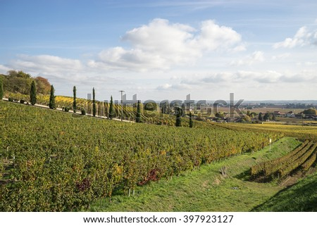 Saint-Emilion Vineyard landscape, south-west of France - stock photo