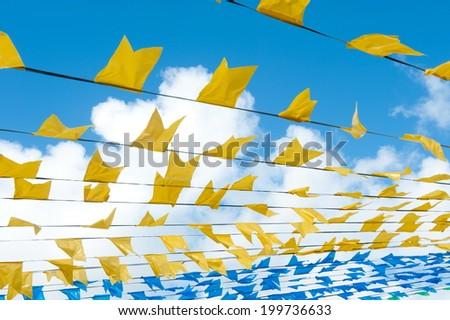 Saint John flags - stock photo
