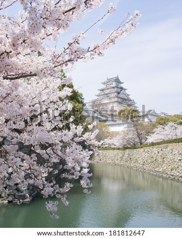 Sakura cherry blossoms and a UNESCO World Heritage castle in Japan - stock photo