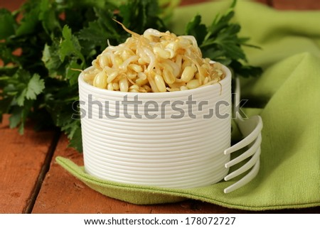 salad of sprouted mung beans in a white bowl - stock photo