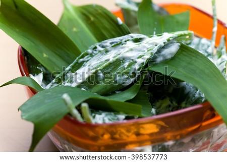 salad with ramson und Sauce - stock photo