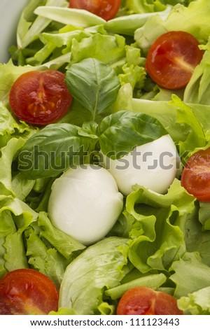 Salad with tomatoes and mozzarella - stock photo