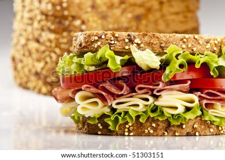 Salami sandwich with cheese lettuce and tomato - stock photo