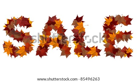 Sale word made with autumn leaves isolated on white. - stock photo