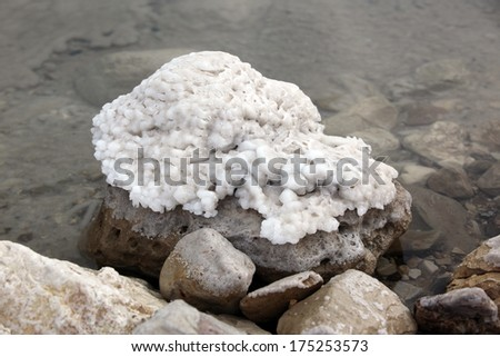 Salt at stone in Dead Sea , Israel - stock photo