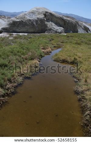 Salt Creek, Death Valley California, habitat for the endemic pupfish Cyprinodon salinus salinus - stock photo