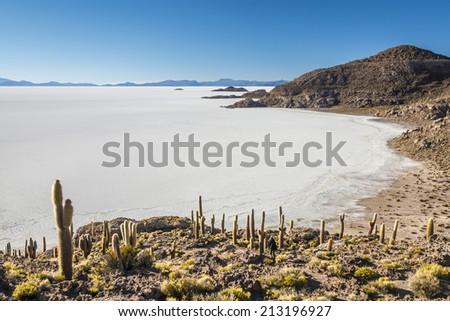 Salt Desert, Salar de Uyuni, Bolivia - stock photo