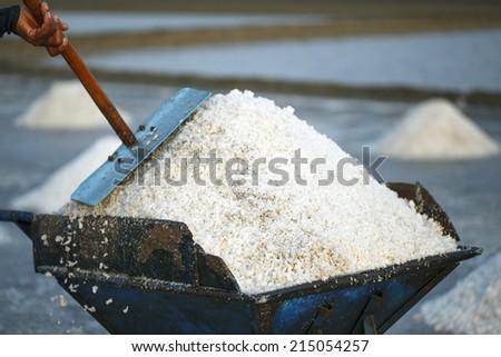 Salt fields, Phetchaburi, Thailand - stock photo