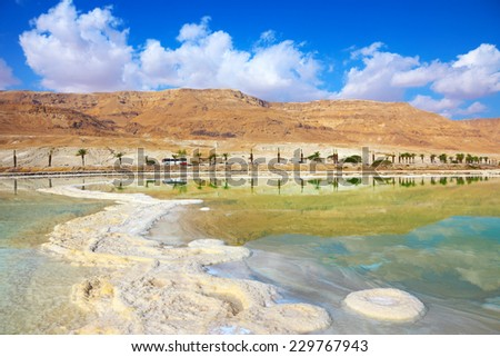 Salt formed a long track with scalloped edges in the Dead Sea. Along the shore with palm trees. Israel in October - stock photo