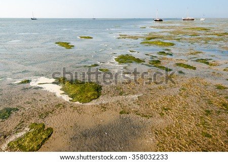 Salt marshes at low tide, Waddenzee, Netherlands. Wetlands of Wadden Sea is Unesco world heritage nature reserve in the north of Netherlands - stock photo