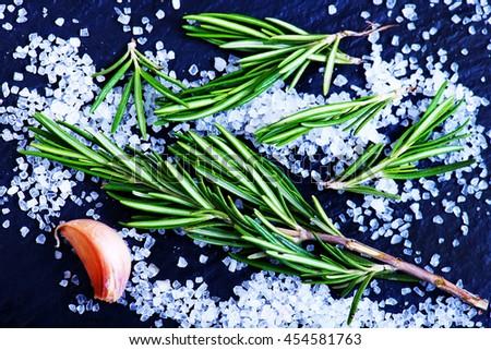 salt with rosemary - stock photo