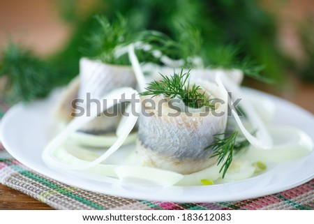salted herring with onion rings and dill on a plate - stock photo