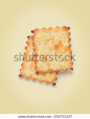 Salty Crackers. picture in retro style - stock photo