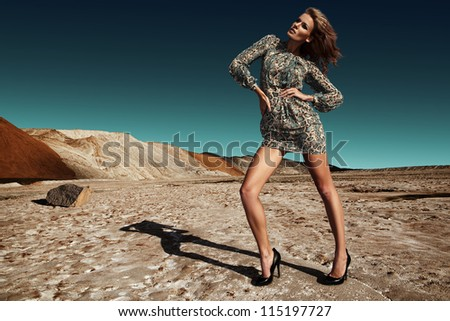 Salty desert - stock photo