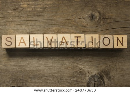 Salvation wooden text on a wooden background - stock photo