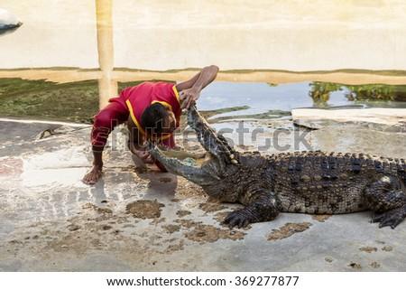 SAMUTPRAKARN,THAILAND - December 29: Crocodile show and man exciting and danger at crocodile zoo farm on December 29, 2015 in Samutprakarn,Thailand - stock photo
