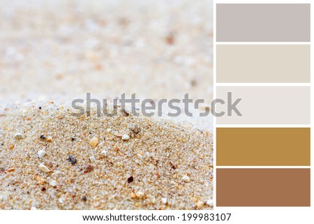 Sand background color palette with complimentary swatches.  - stock photo