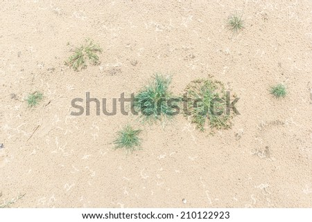 sand backgrounds and texture - stock photo