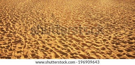 Sand backgrounds and texture with footprints. - stock photo