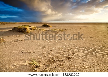 sand beach by North sea in Netherlands before sunset - stock photo