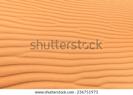 Sand desert background with wind ripple - Concept of purity and pristine unspoiled travel destination - Exclusive adventure travel in african desert Sussuvlei in Namibia territory - stock photo