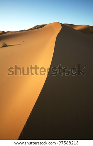 Sand dune half lit by morning sun - stock photo