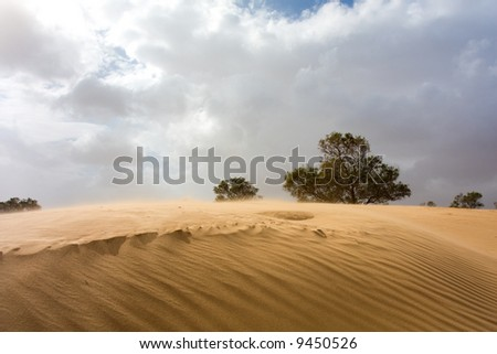 Sand dune on a windy day (sand flying softly over the dune) - stock photo