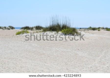 Sand dune on the beach - stock photo