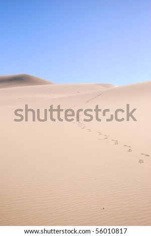 Sand Dune with Footprints (off center) - stock photo