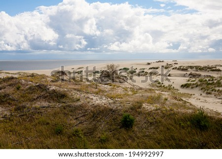 Sand dunes and bushes on Curonian Spit  - stock photo