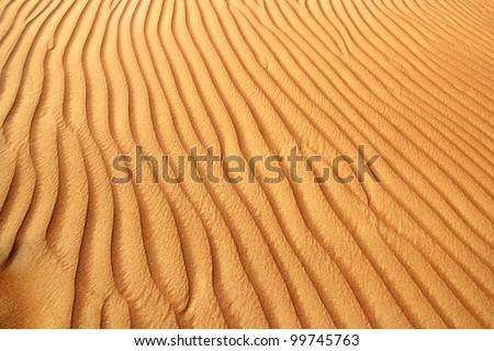 Sand dunes in the Al Ain desert, United Arab Emirates - stock photo
