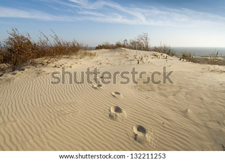 Sand dunes viewpoint at Curonian Spit in Lithuania - stock photo
