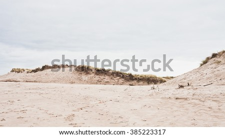Sand dunes with grass at the coast in winter - stock photo