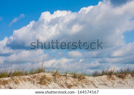 Sand dunes with sea oats on the beach  - stock photo
