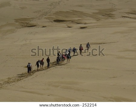 Sand Surfing, string of people walking in sand - stock photo