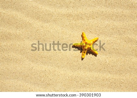 Sand Texture./ Sand Texture With Sea shell. - stock photo