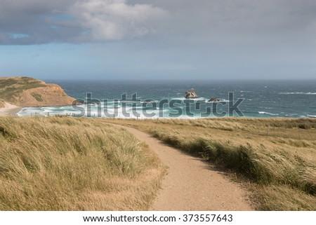 Sandfly Bay before storm, Otago, New Zealand - stock photo