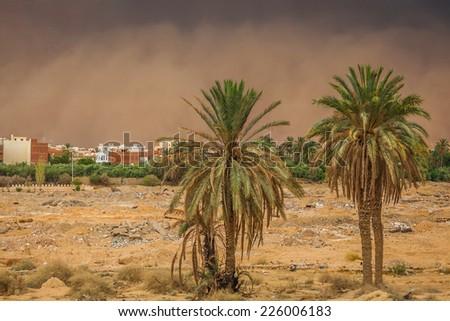 Sandstorm in Gafsa,Tunisia - stock photo