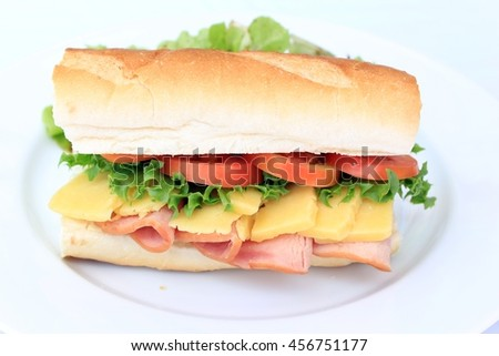 sandwich on plate,freshness,fastfood - stock photo