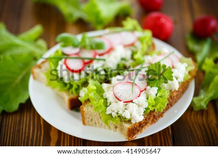 sandwich with cheese, radish and lettuce - stock photo