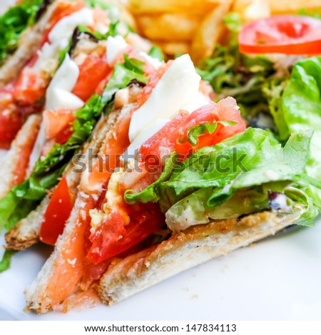 Sandwich with Salmon, cheese and golden French fries potatoes - stock photo