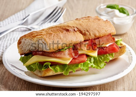 Sandwich with serrano ham and vegetables on white plate - stock photo